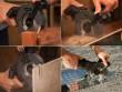 DualSaw CS45 Електрична пила