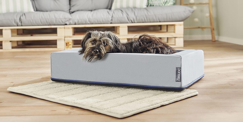 Dormeo Ergo Comfort Pet Bed